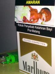 Bayi Pra Matang