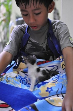 Rifky and Kitten